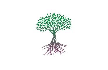 tree abstract logo