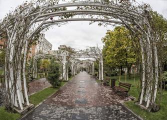 TARGU-JIU, ROMANIA-OCTOBER 08: Park in the downtown area  on October 08, 2014 in Targu-Jiu. Fisheye view.