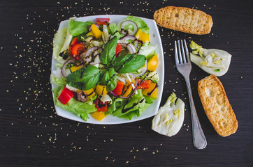 Fresh vegetable salad with breads and fennel. Italian food.