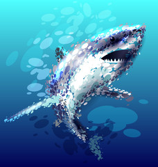 Vector illustration of a shark
