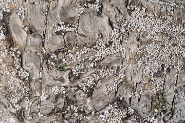 texture of old wooden section with small crushed stone