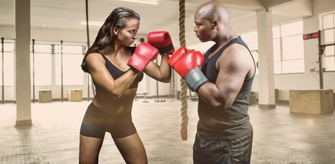 Composite image of male and female boxer with fighting stance