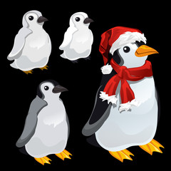 Three images of a penguin and a penguin Santa,