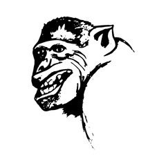 Aggressive monkey grin monkey (abstract)