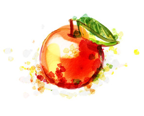 Color illustration of apple in watercolor paintings. Hand drawn. Isolated on white background