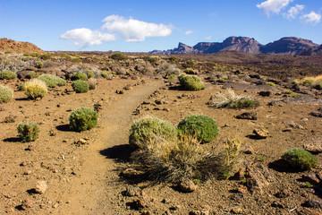 Volcano Pico del Teide, Teide National Park, Tenerife, Canary Islands, Spain