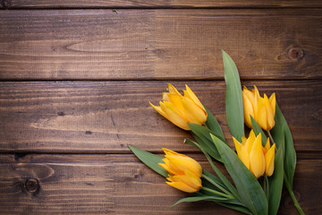 Spring yellow tulips flowers  on brown  painted wooden backgroun