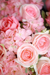 Bright pink roses background,Vintage color.