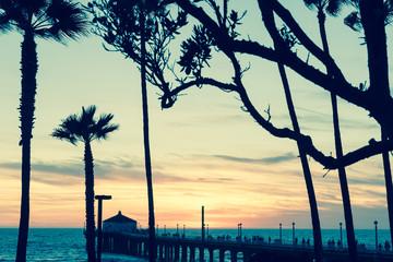 Tropical palms along Californian beaches vintage or retro effect