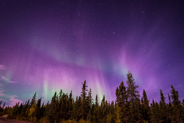 Aluminium Prints Northern lights The amazing night skies over Yellowknife, Northwest Territories of Canada putting on an aurora borealis show.