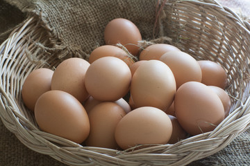 Still Life- Multiple eggs in the basket bubble.