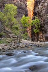 Orange Wall, Green Trees, Blue River