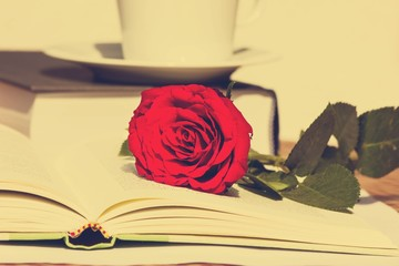 Rose with open Book with a retro vintage filter effect