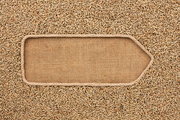 Pointer made from rope with grains rye lying on sackcloth