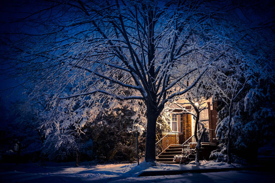 A big tree and home covered in snow with front porch light on late in the evening.