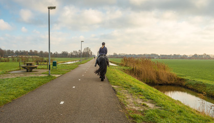 Unknown female horse rider rides on a bicycle path in a rural area.