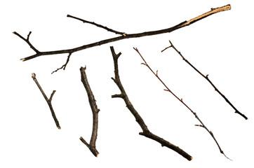 Dry twigs Fototapete
