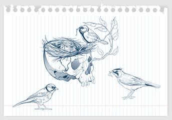birds making a nest in animal skull