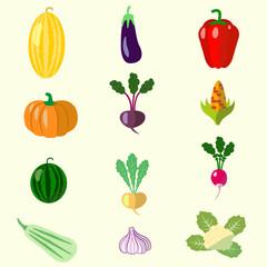 set of vegetables, melon, squash, beets
