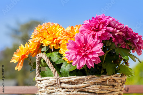 flowers bunte blumen im korb stock photo and royalty free images on pic 98412271. Black Bedroom Furniture Sets. Home Design Ideas