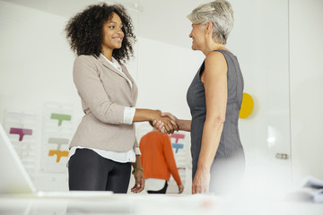 Female boss shaking hands with employee in office