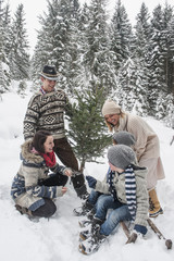 Austria,   happy family with Christmas tree in winter forest