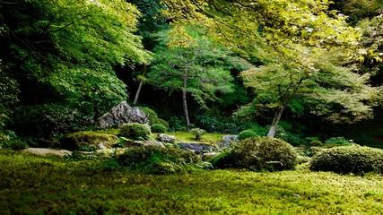 南禅寺の日本庭園