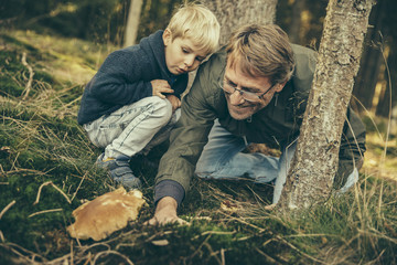 Mature man collecting bay bolete mushrooms with little boy
