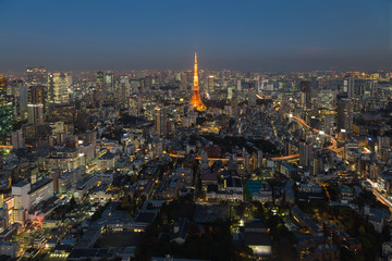 Tokyo city aerial view twilight, Japan