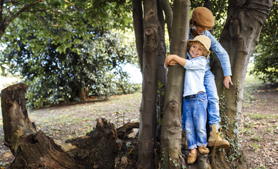 Two blond boys playing together in tree