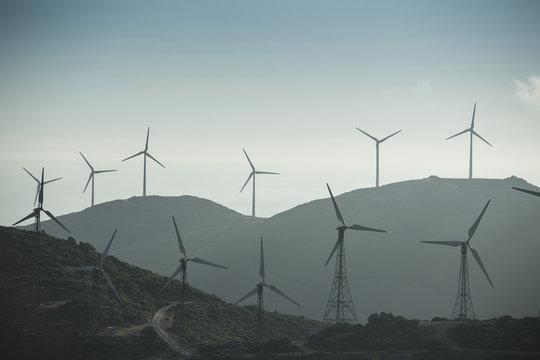 Wind farm, Tarifa, Andalusia, Spain