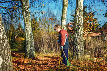 boy racking fallen autumn leaves in garden