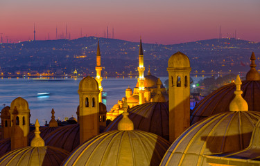 Dome of the Suleymaniye Mosque close-up at sunrise