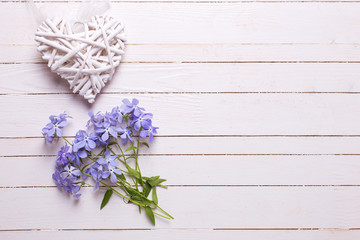 Background with fresh tender blue flowers and decorative heart