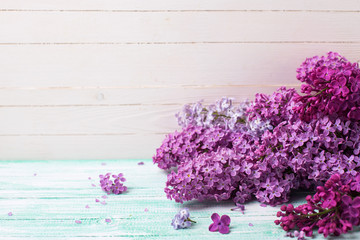 Background  with fresh lilac flowers