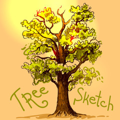 hand drawn sketch tree