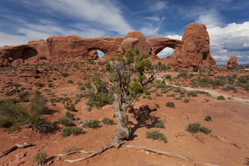 The Glasses at Arches National Park