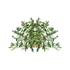 Handmade floral pattern. Bunch of Italian herbs in in a semicircle. Isolated on a white background. Template for printing on bags, cups, textile, souvenirs.