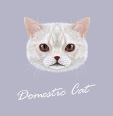 Vector Illustrated Portrait of Domestic cat.