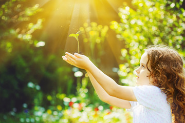 Cute girl holding young green plant in sunlight. Wall mural