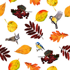 Seamless watercolor pattern birds with autumn leaves and berries. Beautiful red, orange and yellow colors of fall. Textile print. Isolated on white background.