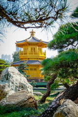 Pavilion of Absolute Perfection Lotus Pond at nan lian garden,Hongkong