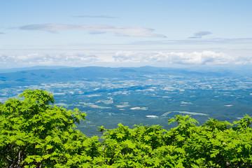 富良野岳登山道より美瑛町方面