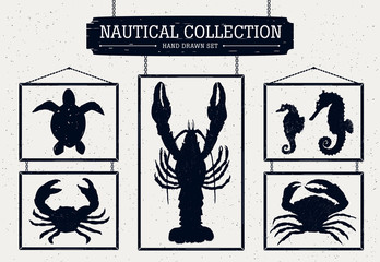 Hand drawn nautical collection.