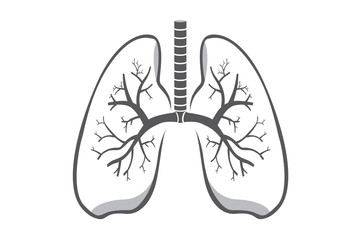 Lung symbol gray color on isolated background for logo design, web icon and other job about medical and health.