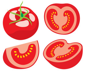 Pieces of tomato vector illustration