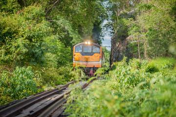 Train runs through a narrow gorge in the valley.