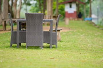Rattan furniture on lawn in a green garden on the hill