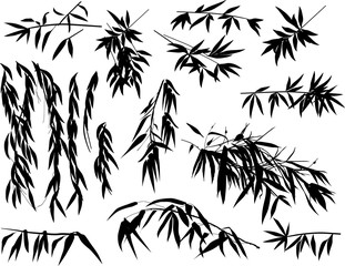 isolated bamboo plant black silhouettes collection