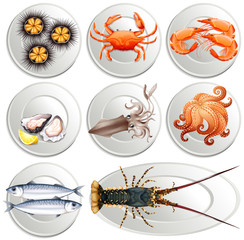 Various kind of seafood on plates